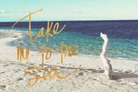 Beach Please II Fine Art Print