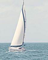 Sailboat in the Ocean Fine Art Print