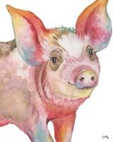 Pig I Fine Art Print