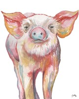 Pig III Fine Art Print