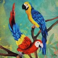 Tropical Birds in Love II Fine Art Print