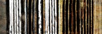 Vertical Horizon II Fine Art Print