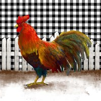 Morning Rooster II Fine Art Print