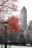 Central Park with Red Tree Fine Art Print