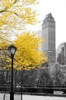 Central Park with Yellow Tree Fine Art Print