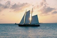 Coastal Sailing Fine Art Print