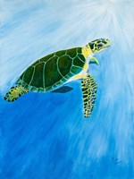 Green Turtle Fine Art Print