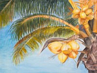 Coconut Palm Trees Fine Art Print