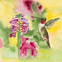 Watercolor Hummingbird Fine Art Print