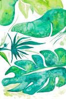 Plant Party II Fine Art Print