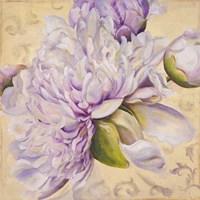 In Bloom I Fine Art Print