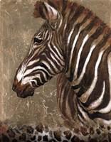 Brown Zebra Fine Art Print