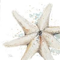 Water Starfish Framed Print