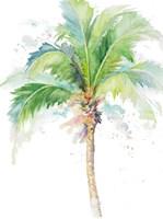Watercolor Coconut Palm Fine Art Print