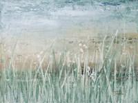 Grass Memories Fine Art Print