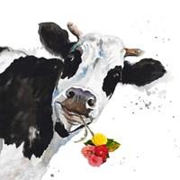 Crazy Cow Fine Art Print