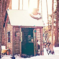 Holiday Shed Fine Art Print