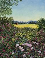 Along The Meadows Edge Fine Art Print