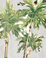 Caribbean Palm Trees Fine Art Print