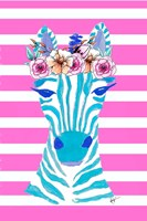 Funky Zebra Fine Art Print