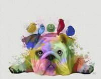 English Bulldog and Birds, Rainbow Splash Fine Art Print