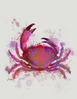 Crab 1 Pink Rainbow Splash Fine Art Print