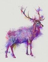 Deer 1 Rainbow Splash Purple Pink Fine Art Print