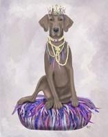 Weimaraner on Purple Cushion Fine Art Print