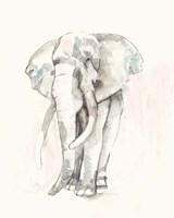 Pastel Safari I Framed Print