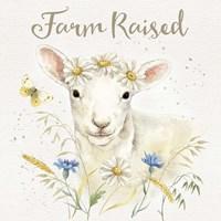 Nostalgic Farm V Framed Print