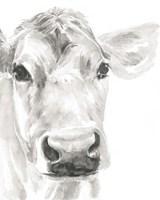Farm Faces I Fine Art Print