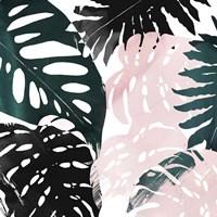 Paradise Sweep I Framed Print