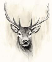 Timberland Animals I Framed Print