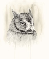 Timberland Animals IV Framed Print
