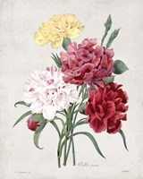 Bouquet I Fine Art Print