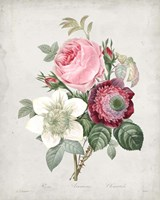 Bouquet IV Fine Art Print