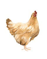 Autumn Chicken I Framed Print
