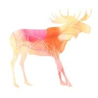 Agate Animal VI Framed Print