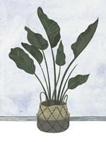 Mes Plants III Framed Print