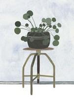 Mes Plants IV Framed Print