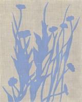 Dusk Botanical I Framed Print