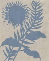 Dusk Botanical V Framed Print