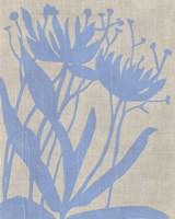 Dusk Botanical VI Framed Print