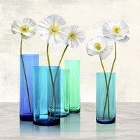 Poppies in crystal vases (Aqua I) Fine Art Print