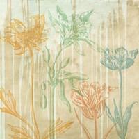 Botaniques Cochin #2 (detail) Fine Art Print