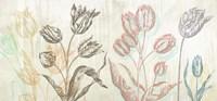 Botaniques Cochin #1 (coleurs) Fine Art Print