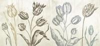 Botaniques Cochin #1 (suede) Fine Art Print