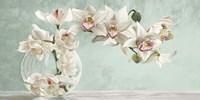 Orchid Arrangement II (Celadon) Fine Art Print