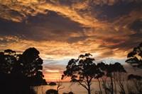 Australia, Tasmania, Freycinet, Sunrise Fine Art Print