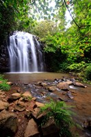 Ellinjaa Falls,  Waterfall Circuit, Queensland, Australia Fine Art Print